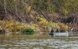 Рыбалка в октябре на реке