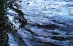 Ловля на течении поплавочной удочкой