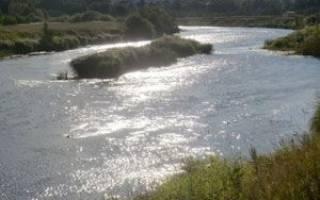 Рыбалка на западной двине