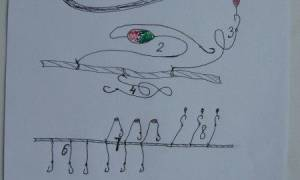 Самоловы для рыбалки своими руками