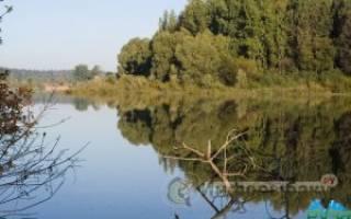 Озеро тростенское рыбалка