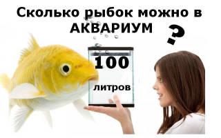 Рыбки для 100 литрового аквариума