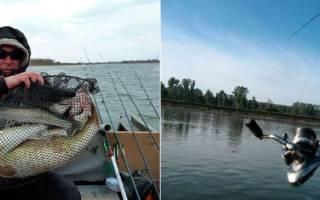 Рыболовные снасти на судака