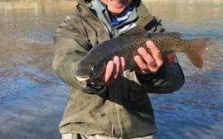 Рыбалка в середине марта