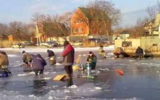 Рыбалка зимой на дону