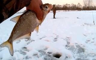 Зимняя рыбалка на шарик