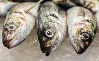 Национальные блюда из рыбы