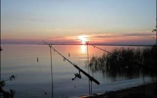 Рыбалка в новой ладоге