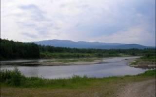 Река косьва рыбалка