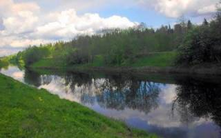 Рыбалка на реке оредеж