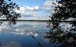 Лесное озеро рыбалка
