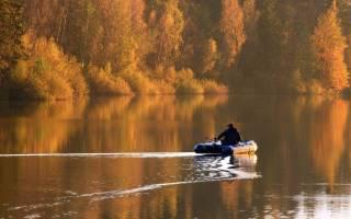 Прикормка для осенней рыбалки