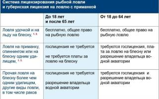 Лицензия на ловлю рыбы сетями