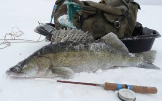 Зимняя рыбалка на тюльку