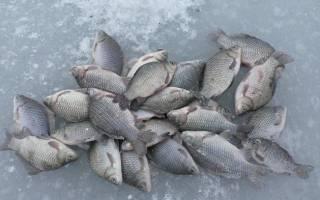 Зимняя рыбалка на пруду
