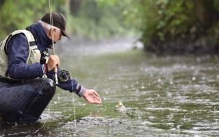 Что влияет на клев рыбы