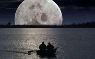 Как влияет луна на клев рыбы