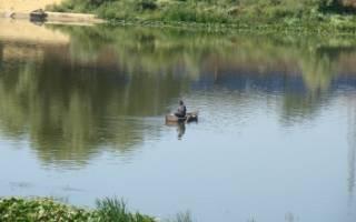 Рыбалка на нижнем дону