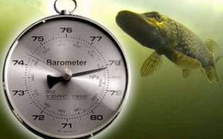 При каком давлении лучше клюет рыба
