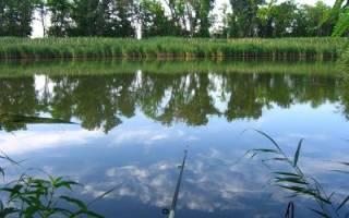 Рыбалка в начале июля