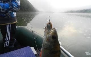 Рыбалка на днестре