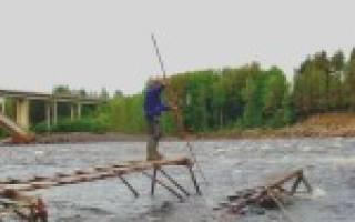 Ловля рыбы сачком