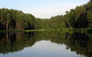 Как ловить рыбу на озере